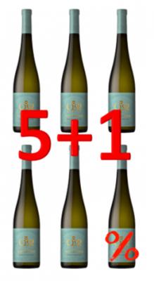 QM Alvarinho DOC Vinho Verde Weisswein 2020 750ml Aktion 5+1