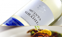 Quinta do Gradil Sauvignon Blanc & Arinto 2018 750ml